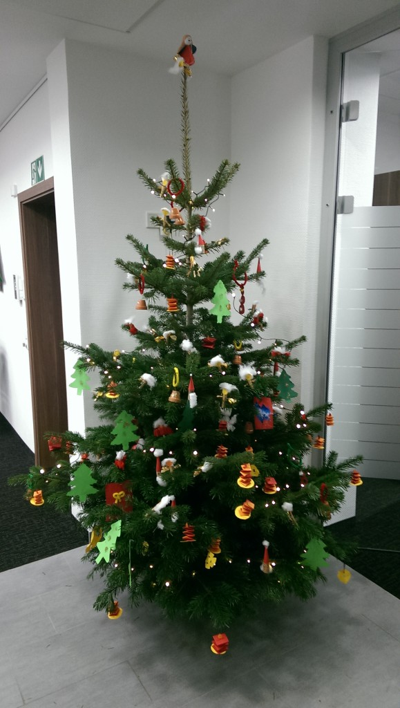 Weihnachtsbaum Bensberger Bank,